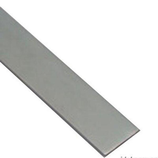 100不锈钢扁tiaogui格